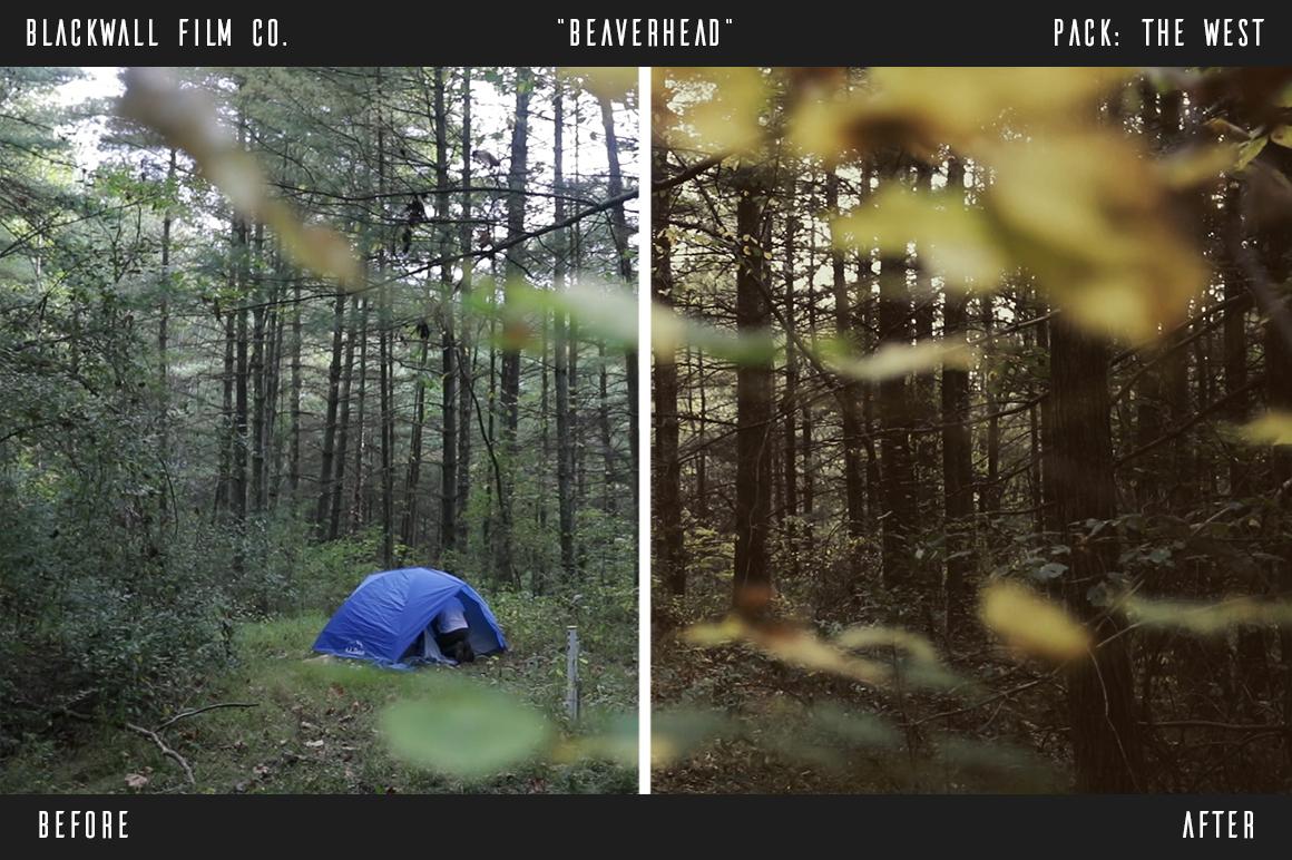 《LUTs:Blackwall Film Co. Video LUTs_13个专业摄像师的多彩LUT》