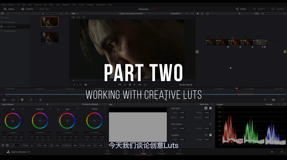 《教程:LUT工作流程解释 Part 2 _DaVinci Resolve(中英字幕)》